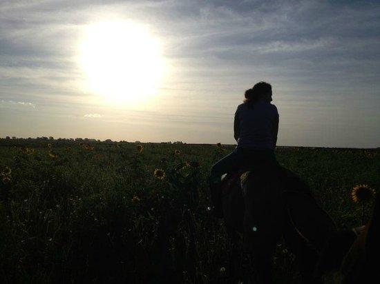 El Venado Polo School : Evening ride around the property.