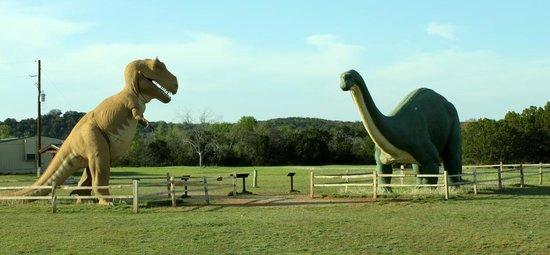 Dinosaur Valley State Park: Park enterance