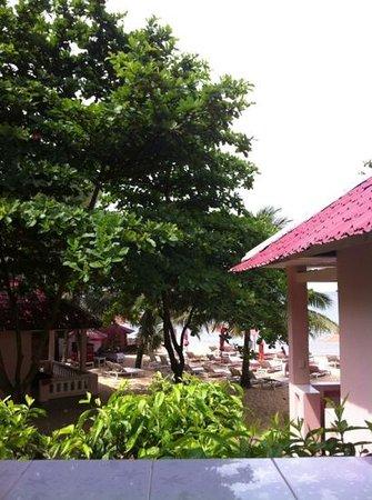 Hiep Thanh Hotel: Sicht von unserer Terrasse