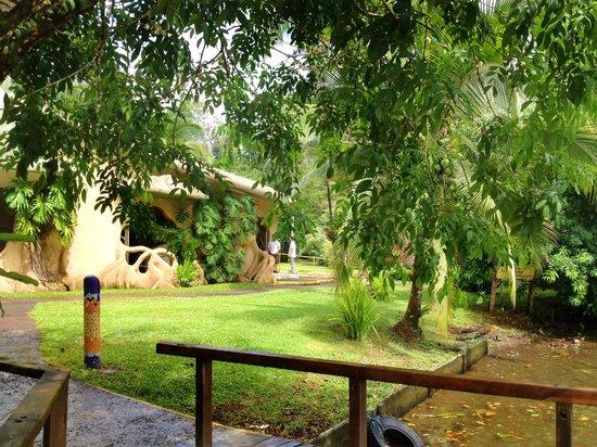 Laguna Lodge Tortuguero: Recepción