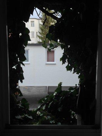 Hotel Adler: Nice vines surround the bathroom window