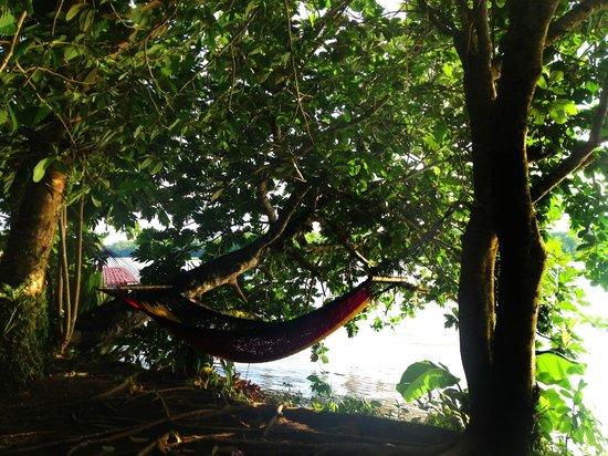 Laguna Lodge Tortuguero: Hamacas cerca del muelle