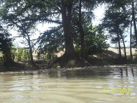 Bezdeks Rentals : Guadalupe River