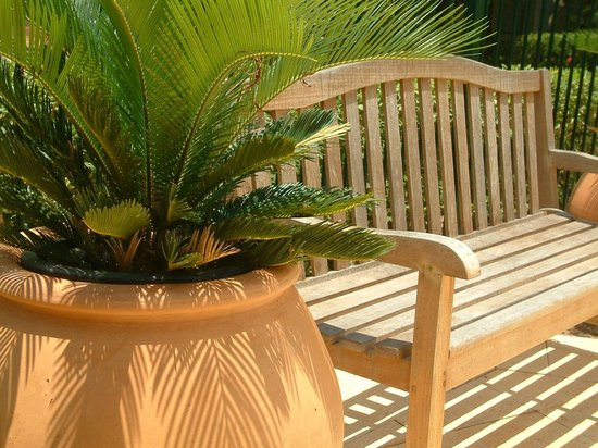Cocos Beach Bungalows: Peaceful seating under the Boab trees