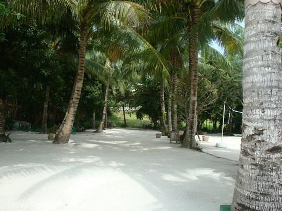 Amarela Resort : white sand