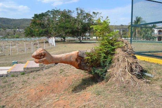 Club Amigo Carisol Los Corales: Fallen tree carving by Rafael