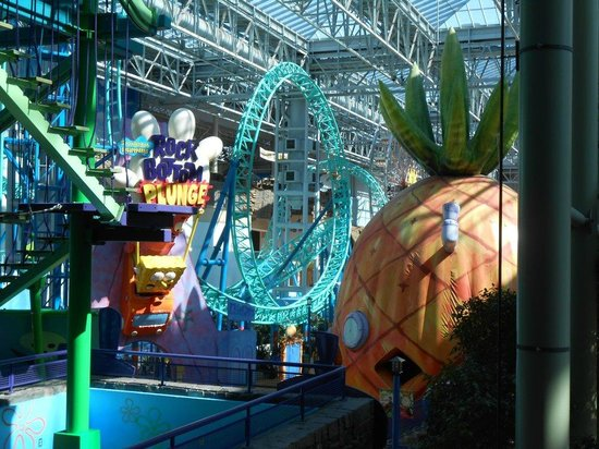 Amusements Picture Of Mall Of America Bloomington