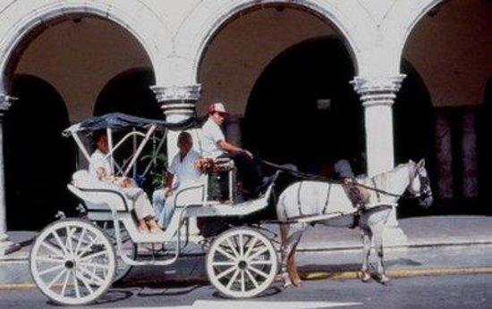 Hotel Chichen Itza: Merida