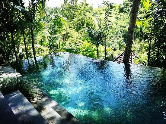 Bidadari Private Villas & Retreat: Private pool @ Villa Tungjung