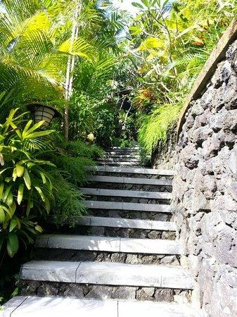 Bidadari Private Villas & Retreat: Many stairs case!