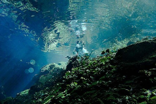 Tulum Underwater Foto