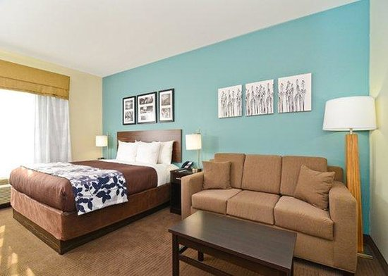 Sleep Inn & Suites N Austin: King Suite