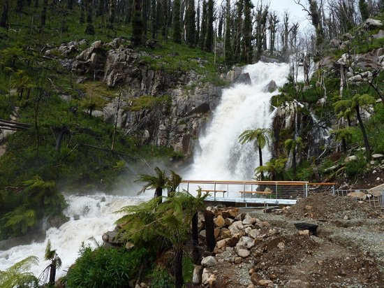 Marysville Australia  City pictures : Steavenson's Falls Marysville, Australia : Top Tips Before You Go ...