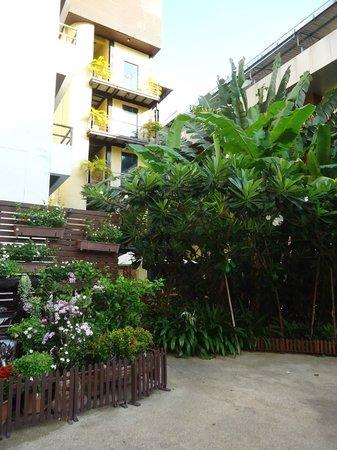 Baron Beach Hotel: hotel garden