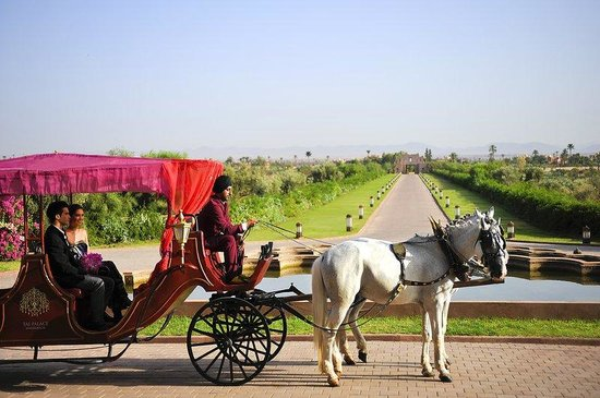 Sahara Palace Marrakech: Horse Carriage