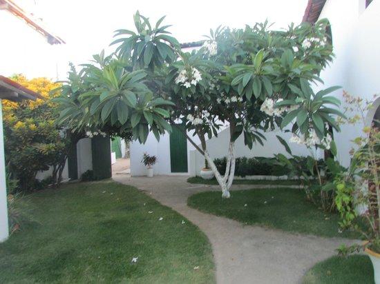 Pousada Chez Roni : patio interno