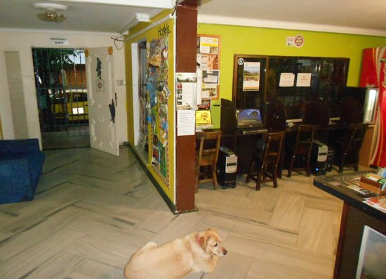 Pitstop Guest House: Internet pago