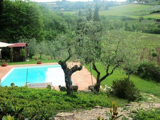 B&B Fagiolari : Pool & Valley view