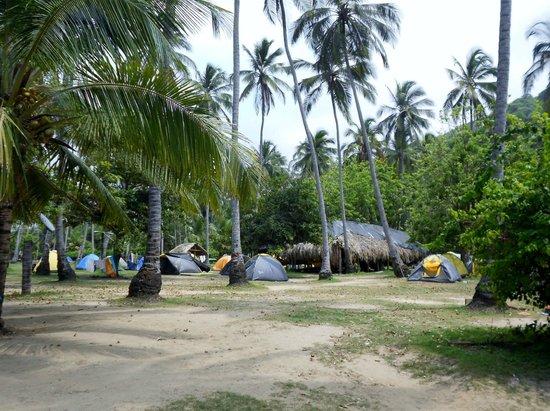 Camping Tayrona: Carpas