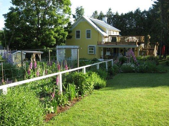 Inky Dinky Oinkink: guest bedroom on upper floor with private deck overlooking the garden