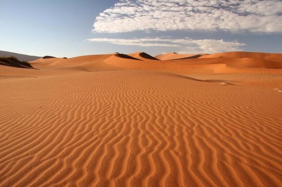 Desert Park Natural Reserve Photo