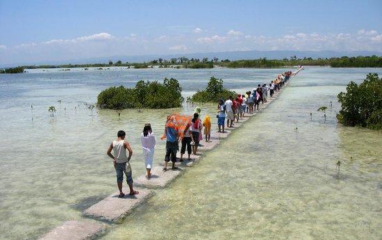 Olango Island