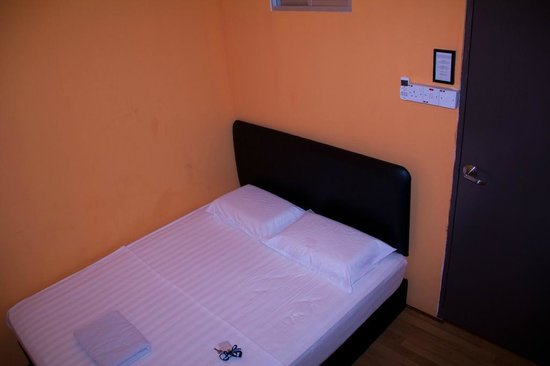 Harbourside Backpackers: The single room without a view