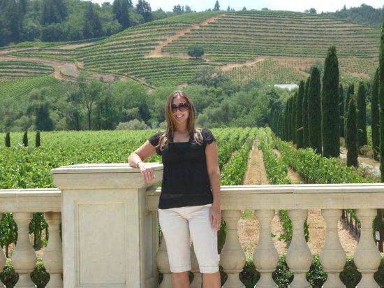 Underground cellar , Picture of Ferrari,Carano Winery