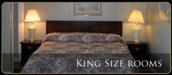 Skyline Inn & Suites: Kingroom