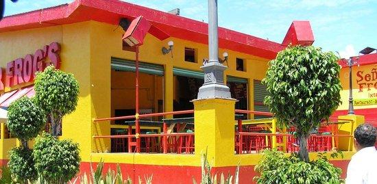 Señor Frog's Ixtapa