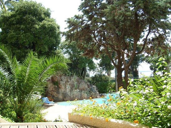 Holiday Inn Cannes : Garden and swimming pool