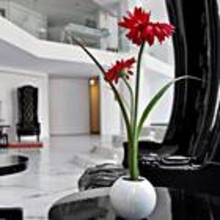 阿克塞爾酒店照片
