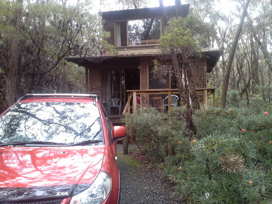 Jemby-Rinjah Eco Lodge: Our Tree top cabin