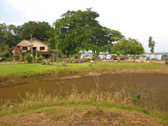 Crooked Tree Lodge: The bungalows are located just behind the main office