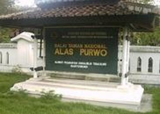 Alas Purwo National Park