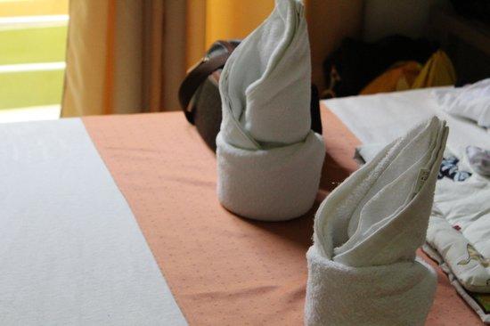 Regency Hotel de Vigan: towels