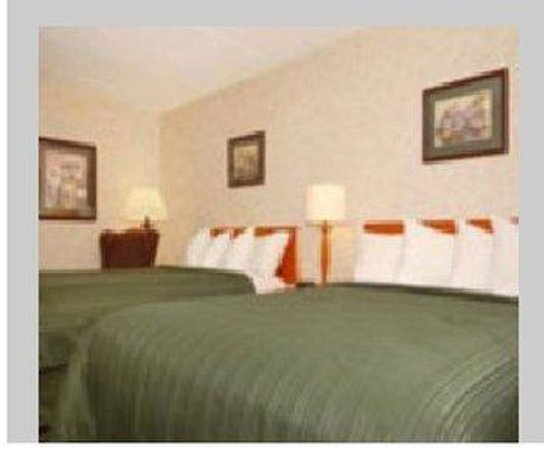All Seasons Inn & Suites: Two Queen Bedroom