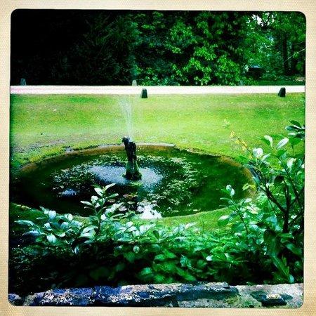 رودلوي أرمز: beautiful grounds