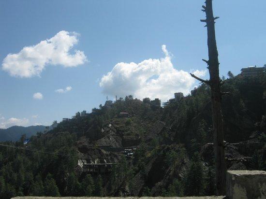 Hotel Rajdoot Shimla : Shimla Nature