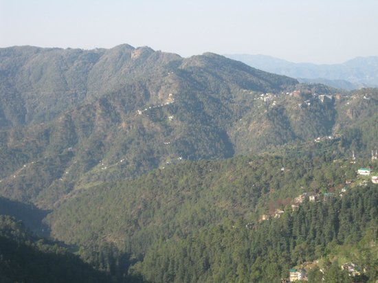 Hotel Rajdoot Shimla : another view from hotel