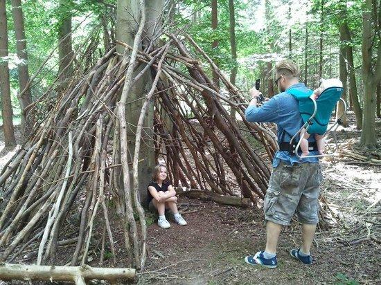 Rendlesham Forest Centre: building dens!