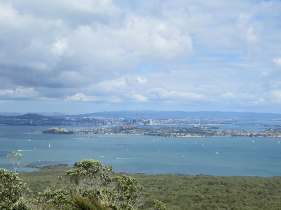 Fullers Rangitoto Volcanic Explorer Tour: View from Rangitoto summit