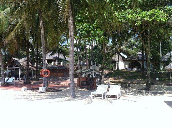 Tropicana Resort Phu Quoc : room in the trees