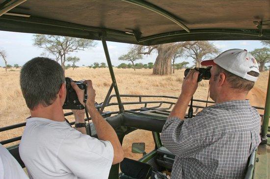 Bongo Safari- Day Tour