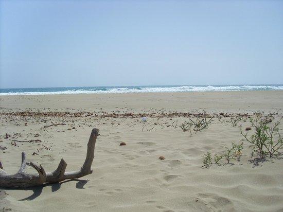 La Petrara Resort: Umgebung