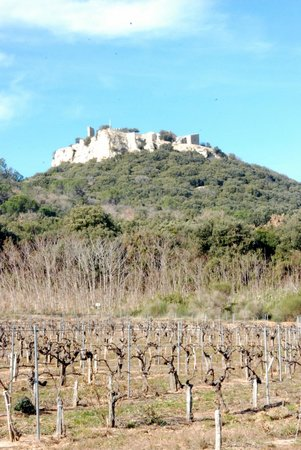 Restaurant l'Angevis : Gicon castle and wineyards