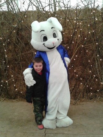 Rare Breeds Centre: Our young son with the panto Easter Bunny :)