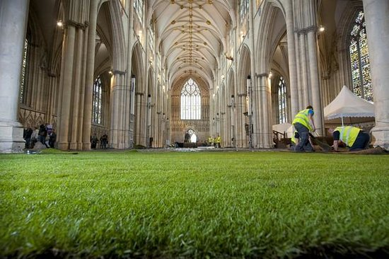 Hotels Near York Minster Cathedral