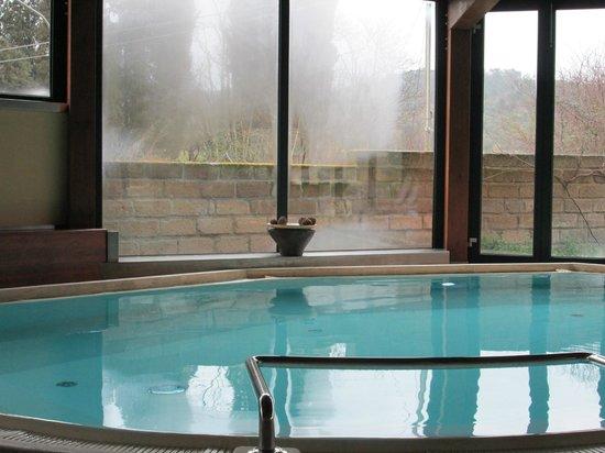 Hotel 2 Mari: piscina interna di acqua salina