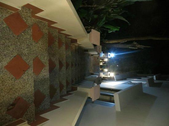 Blue Ocean Beach Resort: Steps to private beach